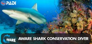 aware-shark-conservation-diver