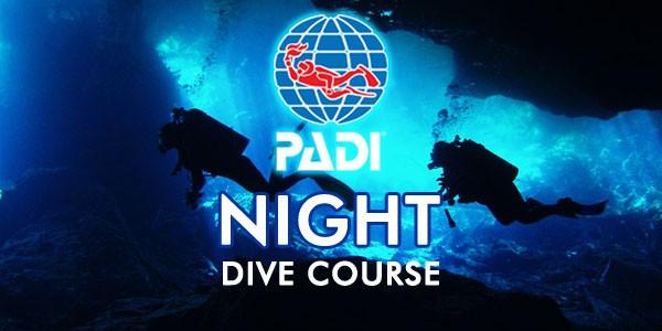 padi-night-dive-course-600×300